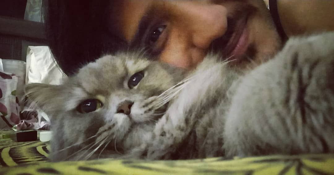 She clicked it. Yakeen maano aur keep scrolling.  #catselfie #catsofinstagram  #catstagram #persiancats #selfie #smiles #lover #love #dinu #selflesslove #animals #pets #hooman  #catsofworld #catsrule #ailurophile #home #cuddles #inlove #catfamily #catsoftheday #catlove